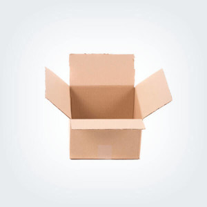 Simple Brown Carton Box